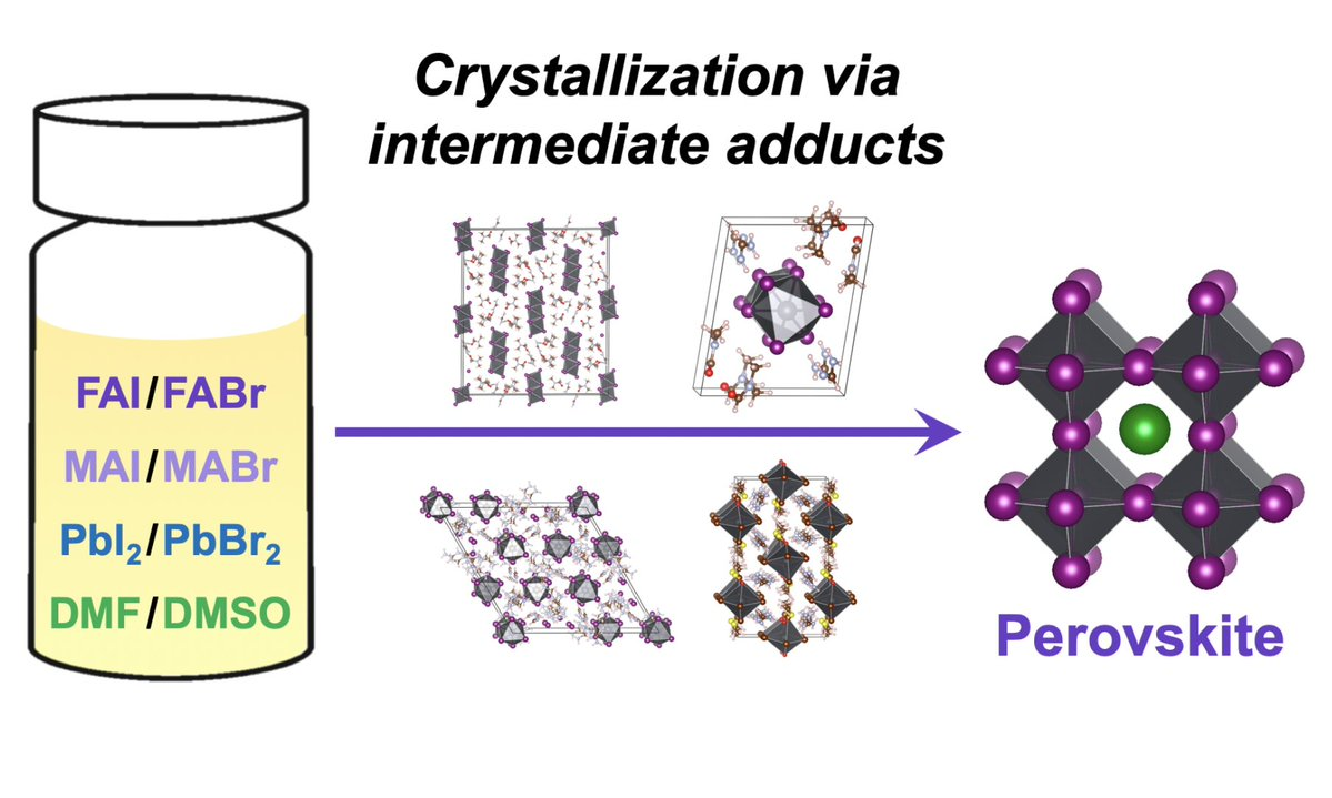 Formamidinium Haloplumbate Intermediates: The Missing Link in a Chain of Hybrid Perovskites Crystallization